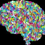 brain, prescription, medication