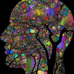 brain, think, psychology